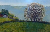 Pasture Oak. edition of 300