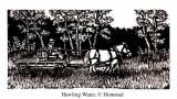 Hauling Water. edition of 450